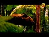 Секретные территории (2013, РЕН ТВ) - 38. Драконы. Звёздная раса