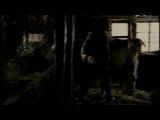 Лисья кровь  Le sang du renard (1996) (драма)