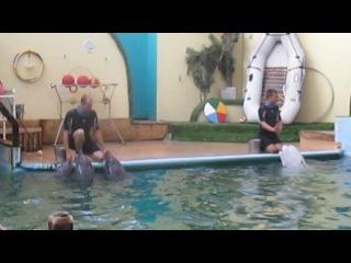 Поющие дельфины Ростовский дельфинарий