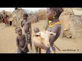 Дикие жёны Африки. Племя дассанач в Эфиопии.