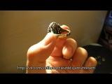 Кольцо Хюррем_матовое_прозрачное