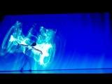 2014 - Японский балет с проекцией Плеяды Japan Ballet Dance Enra Pleiades