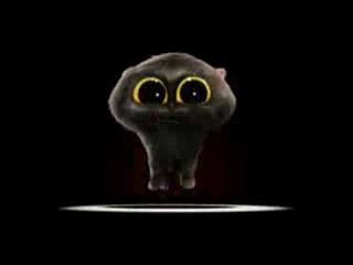 Смешной поющий Кот