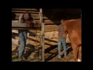 Зак на съемках Скакун Дерби / The Derby Stallion, 2005