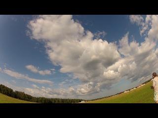 Полет на T-rex 450 sport, на поле за деревней Кабицино (г.Обнинск) 3.08.2013