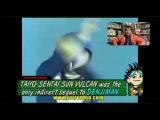 Jew Wario/Psychotaku Crossover - Super Sentai part 1