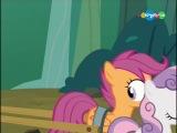 My Little Pony / Дружба - это чудо | 3 сезон, 6 серия [Карусель]