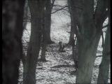 Чёрная гадюка 1-й сезон 2-я серия