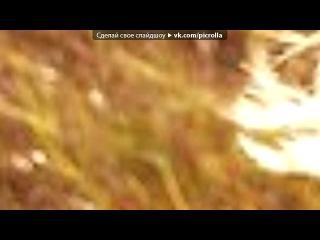 «ФотоСтатус.рф» под музыку песня про катю - очень прикольный реп=). Picrolla
