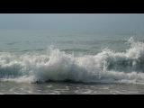 «МОРЕТАКОЕ РАЗНОЕ!!!» под музыку Звуки Природы - Пианино шум моря и чайки Picrolla