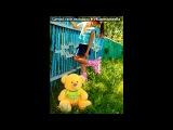 «фотки» под музыку Elvin grey - Бахетемден йозагы (Bash). Picrolla