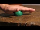 Самый короткий фильм. номинированный на Оскар - Свежий авокадо