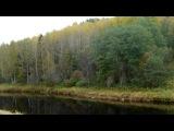 «осень» под музыку Edvin Marton - Вивальди (скрипка Страдивари). Picrolla