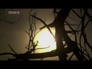 BBC: Великие воины / BBC: Warriors (2007-2008) 5. Ричард Львиное Сердце