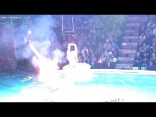 Тульский цирк AQVA SHOW 01.02.14