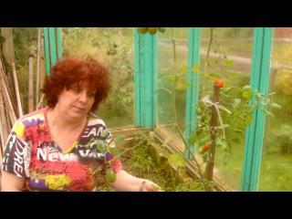 «На даче» под музыку Наталья Лагода - Катя-Катенька-Катюша-Катерина. Picrolla