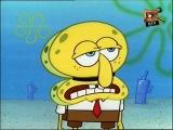 SpongeBob - Squidward