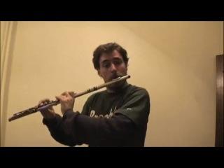 Битбокс на флейте. И.С.Бах. Шутка.