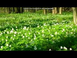 «Весна» под музыку Й.С. Бах - Двойной концерт для скрипки (Vivace). Picrolla