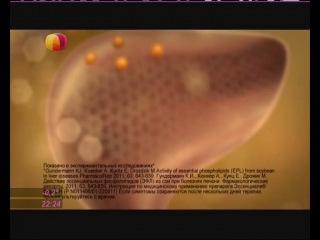 Реклама Эссенциале форте Н (12.2013)