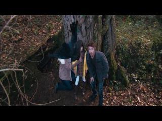 Пробуждающийся лес (2011) 720HD