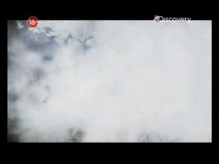 Беар Гриллс Выбраться живым 7 серия