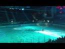 20 лет хоккею.Шоу.Анисин,живой звук.
