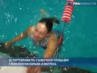 Девушка плавает в ледяной воде с китами.