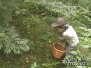 Клим с другом собирают в лесу грибы