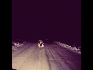 После тренировки перегоняла мотик в другой гараж, пришлось ехать по дороге, а у меня резина летняя! Страшно было, но это крутое ощущение, не чувствуешь холода, страха, да и вообще нет никакого чувства дискомфорта. Тут я чуть не грохнулась сильно, но удержалась) короче экстрима и спорта сегодня было достаточно) мне с непривычки, пока выкачу из гаража или заведу уже сто раз устаю,но желание просто поехать побеждает все на свете) мне сегодня хорошо) мой сын гордится мной, я горжусь собой..немного печалюсь,