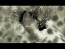 Мисливці за вірусами  Virus Hunters (2008) Українською!!!