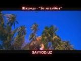 Shahzoda Bu muhabbat Восточные песни