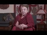 _Устами учителей. Тамтог Ринпоче. История из жизни Будды.
