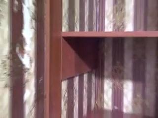 Встроенный шкаф-купе на заказ в прихожую (www.bistroshkaf.ru)