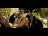 Жан де Флоретт (Манон с источника) 2 часть
