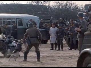 Как фашисты и бандеровцы сжигали Хатынь в 1943 году. Одесса! Разве ты могла представить такое..?!