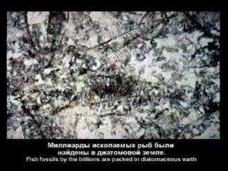 Кент Ховинд - Теория Ховинда (1)