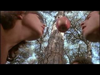 FILMITALIA.TV » Sapore di mare 2 – Un anno dopo (1983)