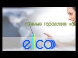 ELLCO самый лучший интернет провайдер ,, г. Избербаш , ул Гамидова 52