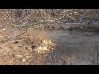 Зимняя рыбалка на фидер! Ловим чебака и карпа в Челябинске и окрестностях.