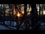 «Просто природа» под музыку Shigeru Umebayashi - Koto (OST Дом летающих кинжалов). Picrolla