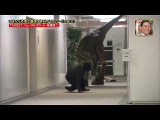 Японца напугали куклой динозавра :D