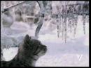 """ТВ-реклама """"Whiskas"""" (новогодняя),лучшая чем в 2013-14-м саундтрек"""