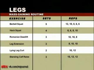 Muscle and Fitness Training System - Back and Legs (Спина, Ноги) | Как правильно накачать (тренировать) спину и ноги