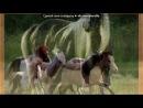 «Разные фото лошадей» под музыку Май Литл Пони - Радуга и Пинки типо Пинки из видео Пай и Дэш.