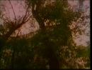 ★ Из фильма Не верь разлукам, старина. Юрий Визбор - Сретенский двор