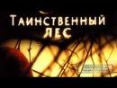 Таинственный лес  The Village (2004) HDRip-AVC