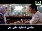 amin habibi kurdish subtitle