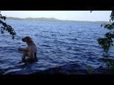 СЭМ Знакомиться с Озером Калиново