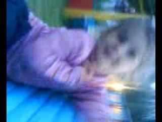 маленькая Маринка